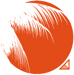 logo-cigales